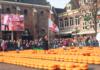 Serowi celebryci na targu w Alkmaar